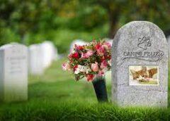 Buscan instalar un cementerio de animales en Esquel